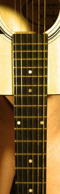 GuitarTease200